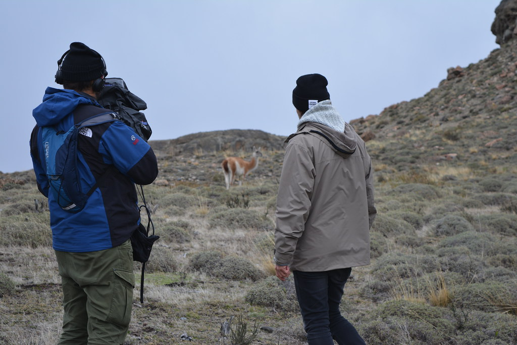 Johnny (camera operator) and Mads (the host) staring at a wild guanaco
