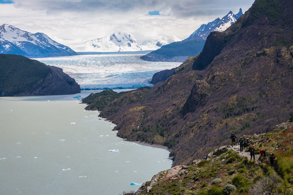 View from the Grey glacier trail