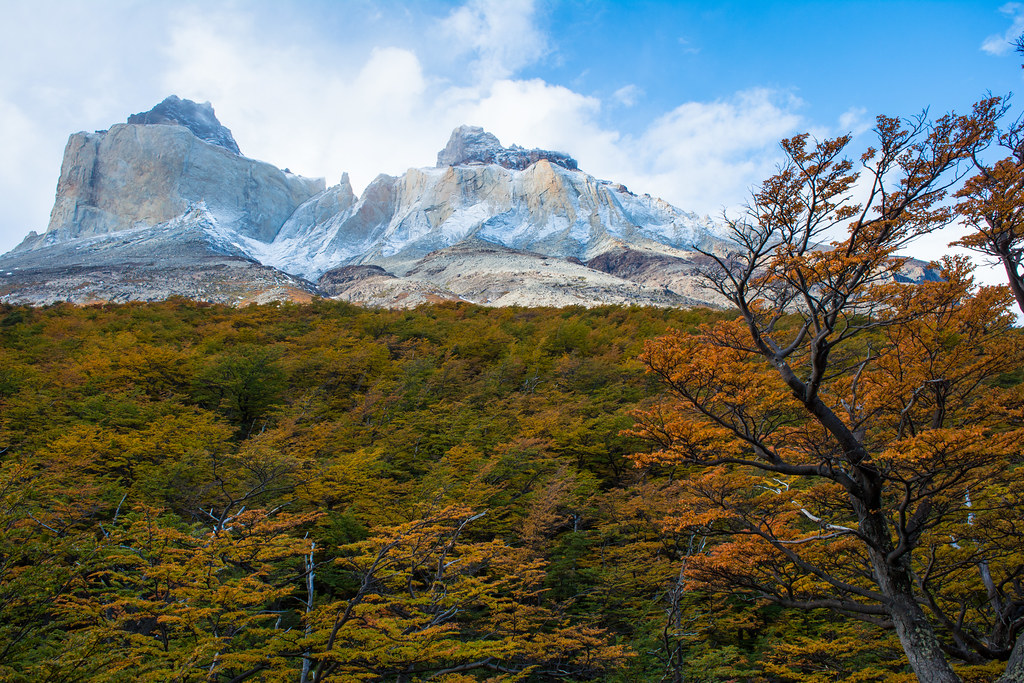 Autumn in Torres del Paine