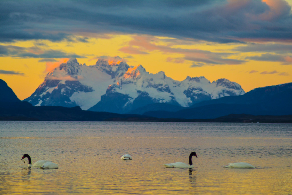 Mt. Balmaceda (and the glacier of the same name) as seen from Puerto Natales