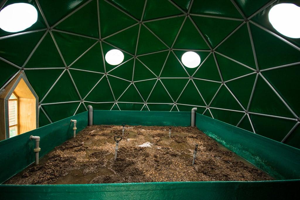 bio-filter dome