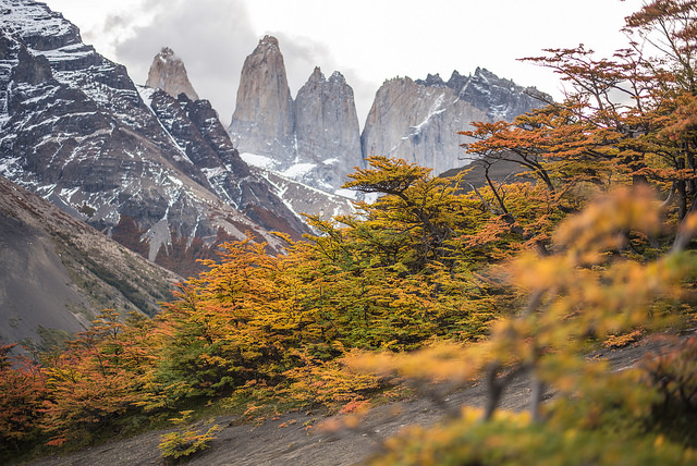 The autumn colors in Patagonia