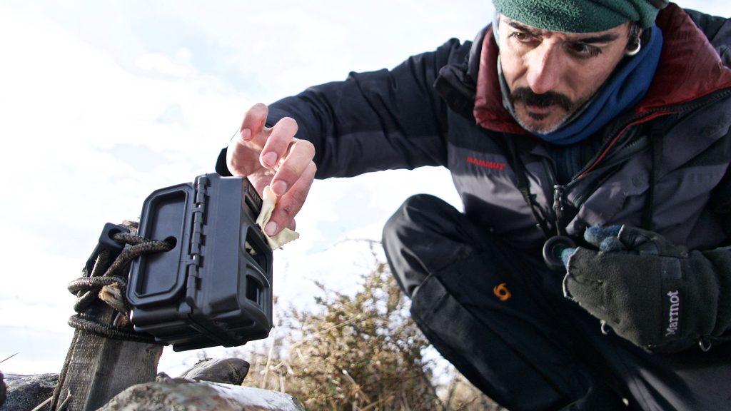 Camera traps Torres del Paine