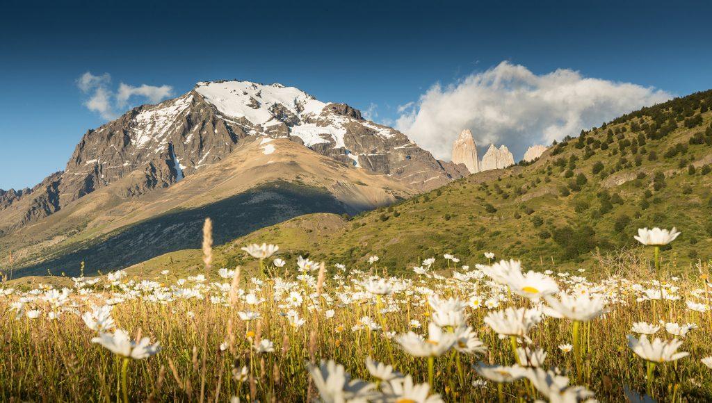 Torres del Paine in Spring