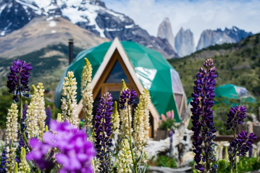 Torres del Paine in Summer
