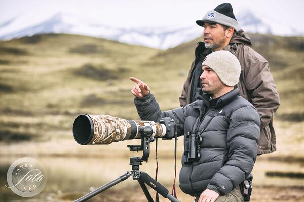 Diego Araya Wildlife Guide